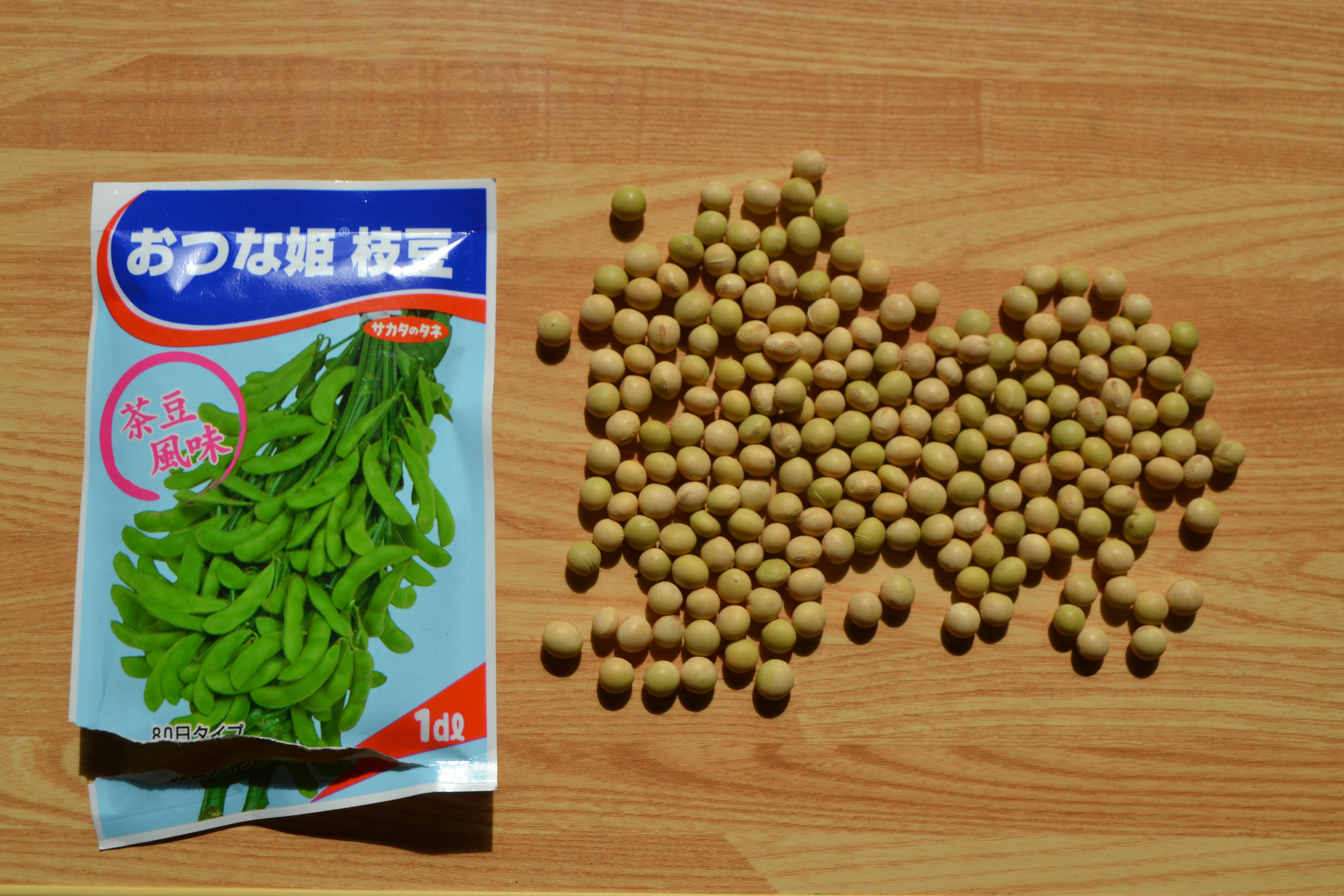 枝豆&大豆1デシリットル(dL)は何粒か?実際に数えてみた!