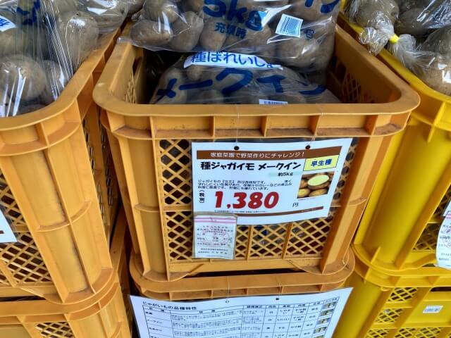 メークイン 種芋 スーパービバホーム