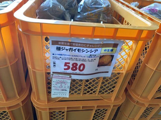 シンシア 種芋 スーパービバホーム